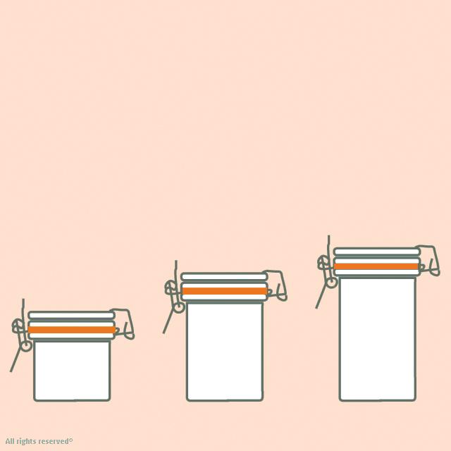 bocaux fermeture mécanique