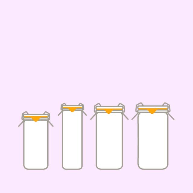 Bocaux wecks tubes